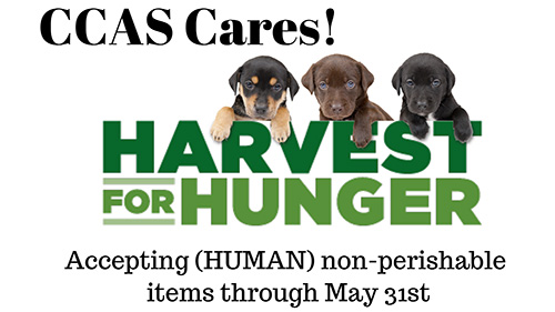 three dogs above the words Harvest For Hunger